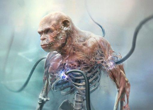 Новые подробности оBeyond Good and Evil 2: раса обезьян-рабов, детали сюжета иносорог-растаман