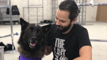 The Last of Us: Part 2 можно пройти без убийства собак