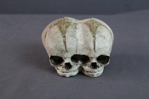 Хакеры запустили вRed Dead Online злобных двухголовых скелетов