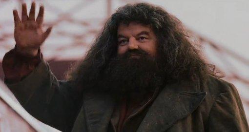 Актер, игравший Хагрида, заступился заДжоан Роулинг, которую обвиняют втрансфобии