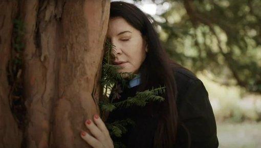 Совет дня: рассказывайте освоих проблемах деревьям