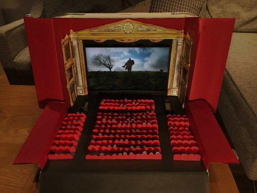 Американский режиссер показал, как устроил дома специальный «Карантинный Кинотеатр»