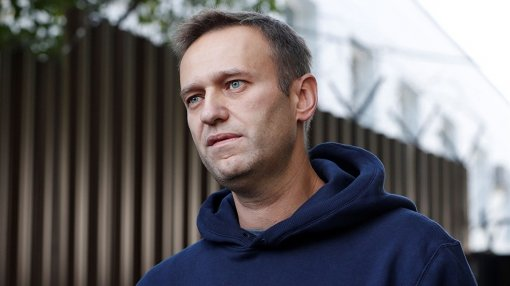 «Я очень люблю котов, но тут явно какой-то подвох»: Навальный недоумевает от полученных фотографий