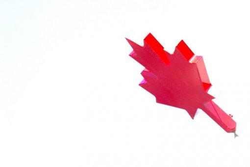 Сборная Канады в 27-й раз выиграла чемпионат мира по хоккею
