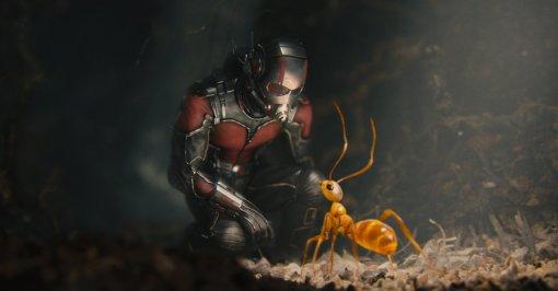 Начались съёмки третьего фильма о Человеке-муравье с названием «Квантомания»